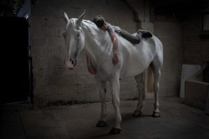 1. Faith - Mieke Douglas - What is it about the relationship between humans and horses that is so enduring? This teenage boy and gentle giant are so utterly at ease with with each other. The image tells a story of a shared connection, almost like a dream. In these times of increasing pressure and anxiety we need to reconnect with the natural world to find our inner peace and calm.