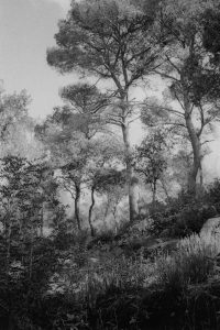 29. Baleares_Dubuisson_01 - Emile Hyperion Dubuisson